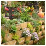 Júlia Villa Apartmanház szikla kertje Hévízen